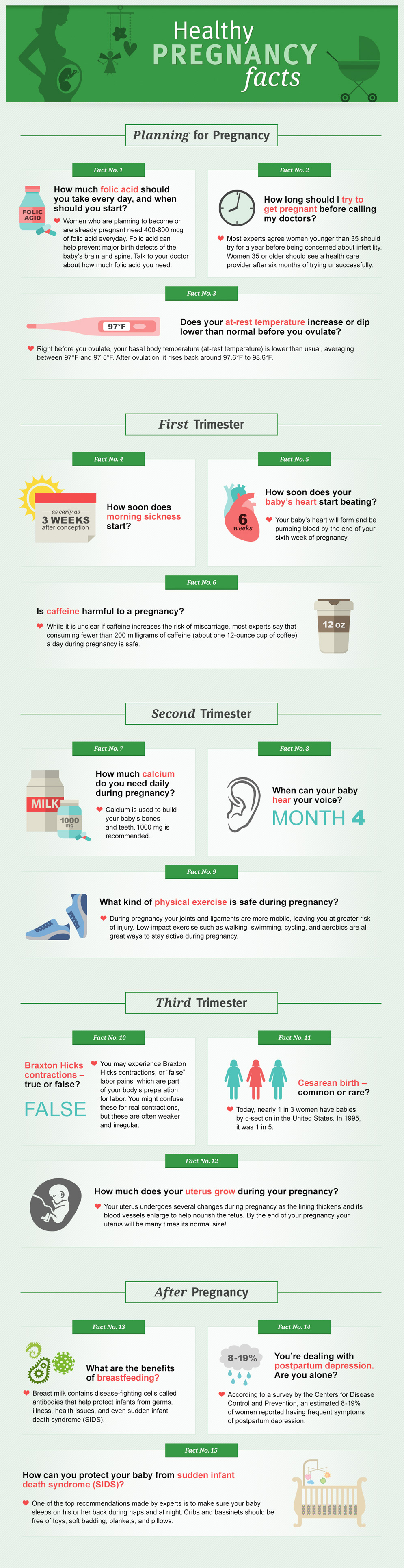 healthy pregnancy facts